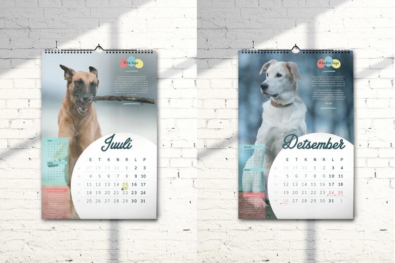 petcity-kalender-2dbl